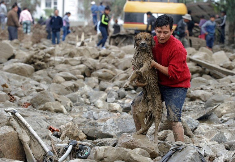 A man carries a dog after heavy rains caused a mudslide and flooding in Tiquipaya, Bolivia, on Feb. 7. The overnight swelling of the Taquina river damaged buildings and covered streets in mud and rubble throughout the small community.