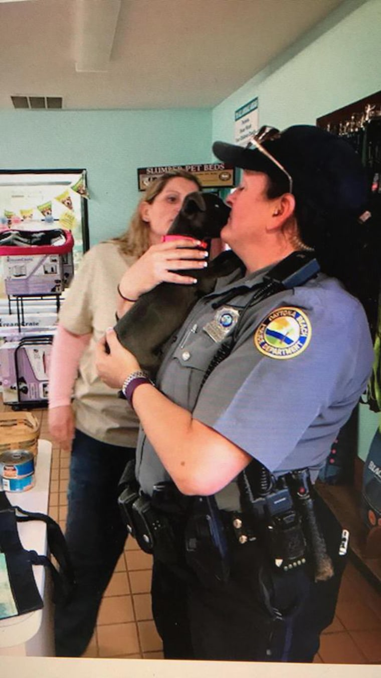 Dog abandoned by river is rescued by animal control officers, and adopted