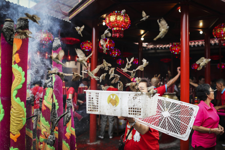 Image: Chinese Lunar New Year Celebrations