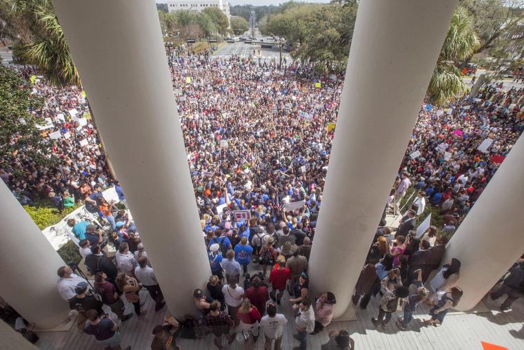 Image: Rally for Gun Reform