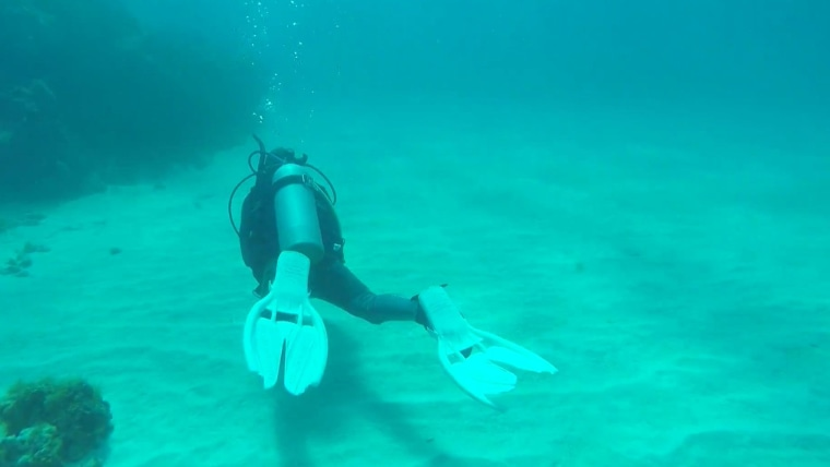 Rossen Reports producer LIndsey Bomnin goes scuba diving.