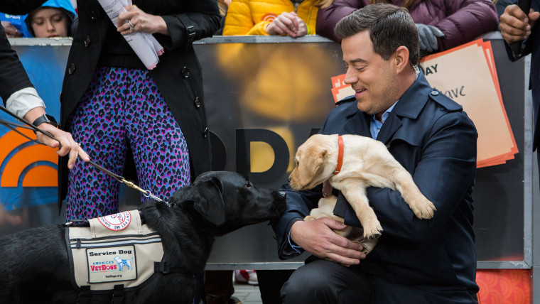 Carson Daly with TODAY puppies Sunny and Charlie