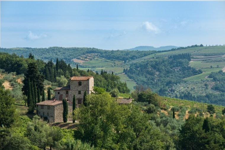 Michelangelo Villa
