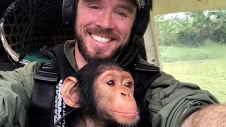 Pilot rescues an orphan chimp