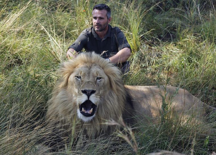 Image: Lion whisperer Kevin Richardson