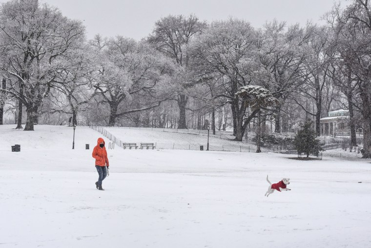 Image: A person walks their dog through the snow during a storm in the Brooklyn borough of New York City