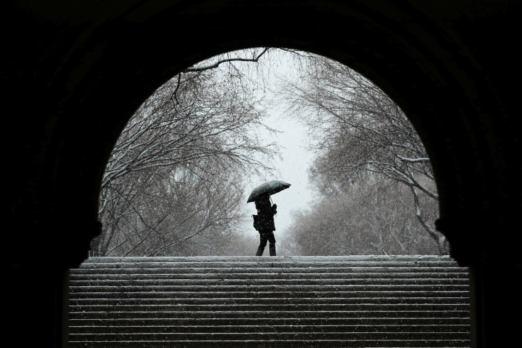 Image: A pedestrian walks through Central Park during a snow storm in New York