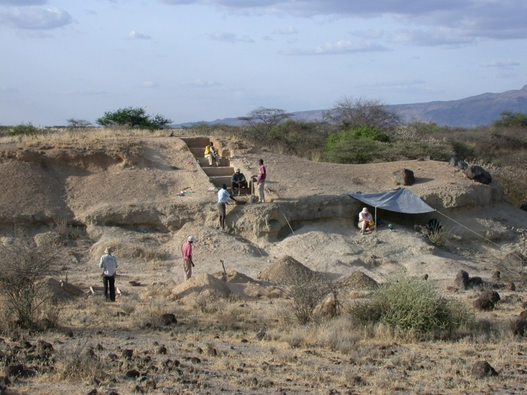 Image: Olorgesailie Basin excavation site