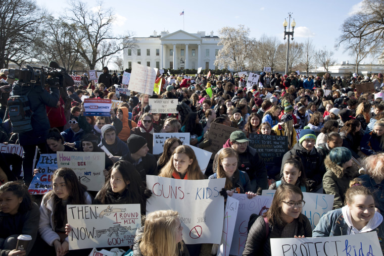 Image: National School Walkout in Washington DC