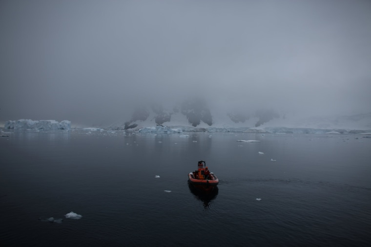 Image: The Wider Image: Journey to Antarctica: seals, penguins and glacial beauty