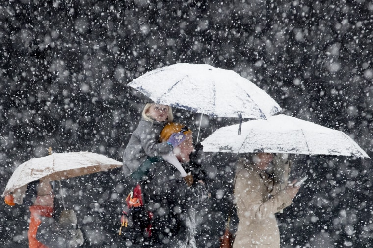 Image: Snow fall in Washington DC
