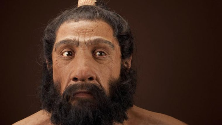 Smithsonian's Neanderthal