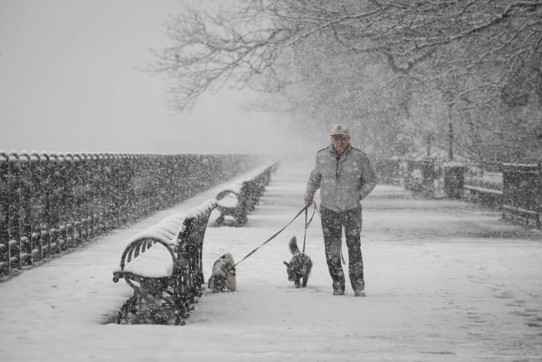Image: A man walks dogs in the snow on the Brooklyn Promenade
