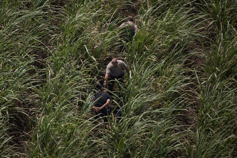 Image: Border Patrol agents apprehend illegal immigrants near the U.S. border with Mexico