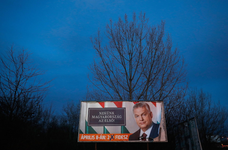 Image: Hungarian elections