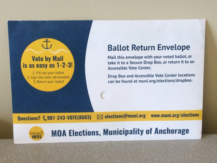 Image: Mail-in Ballot