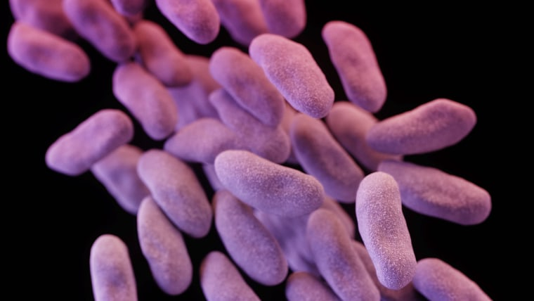 Nightmare bacteria' are trying to spread in the U S , CDC says