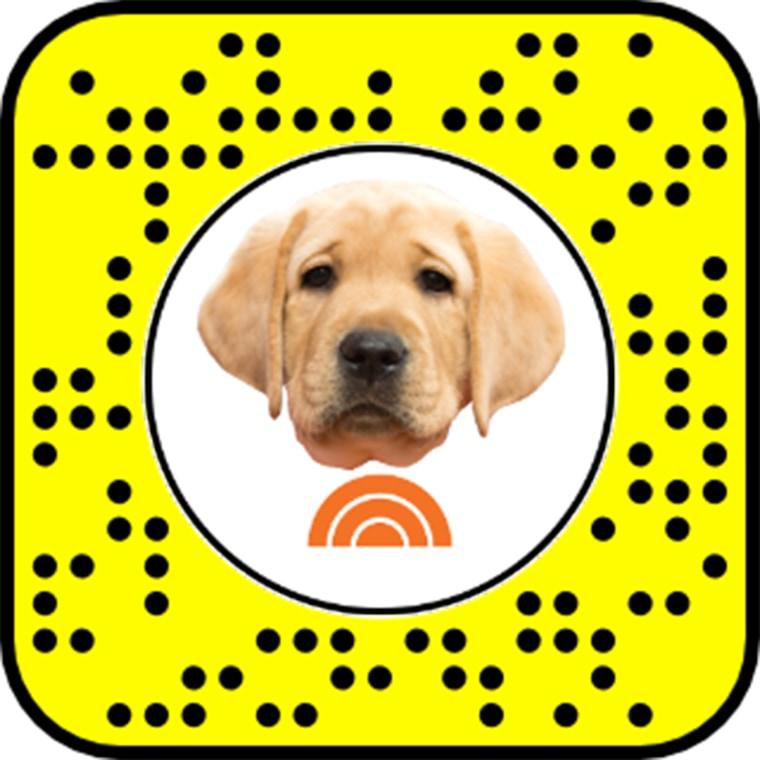 Unlock the TODAY Puppy Snapchat Lens