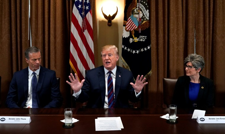 Image: Flanked by Senator John Thune (R-SD) and Senator Joni Ernst (R-IA), U.S. President Donald Trump speaks during a meeting with governors and members of Congress at the White House in Washington, on April 12, 2018.