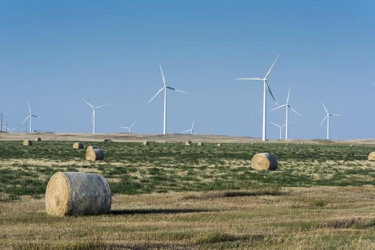 Image: Jobs in wind energy