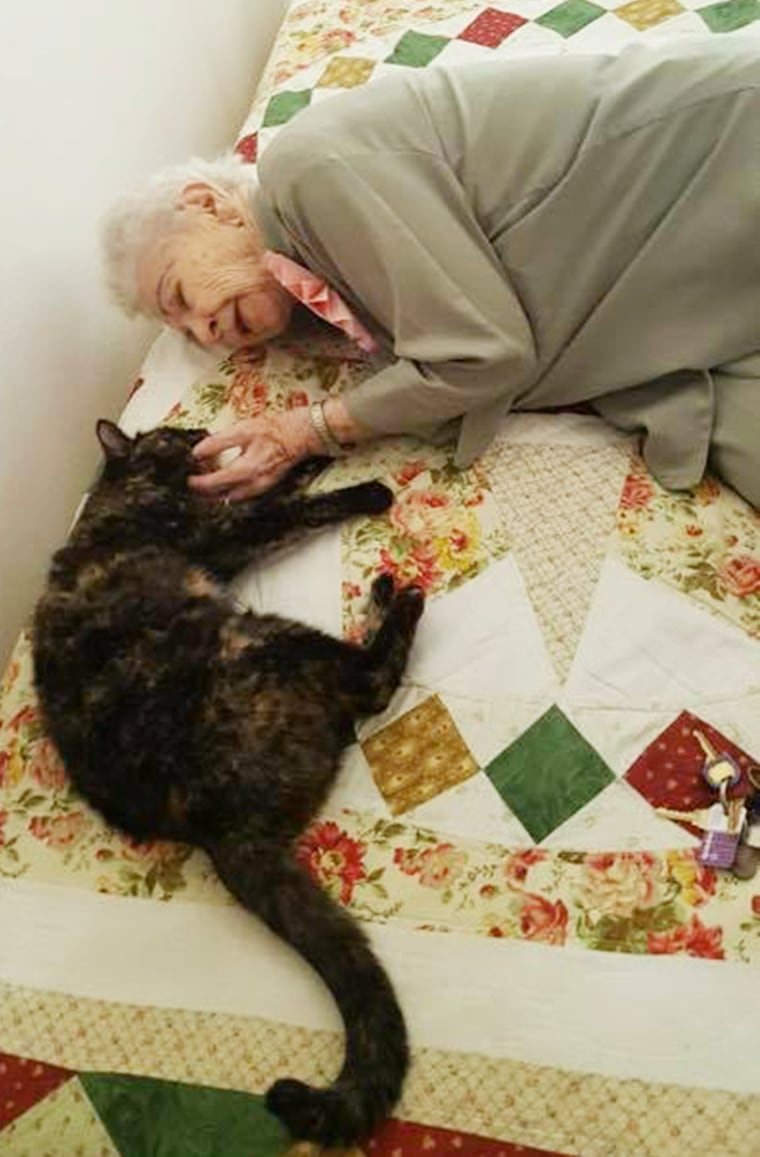 103-year-old woman gets surprise cat for birthday
