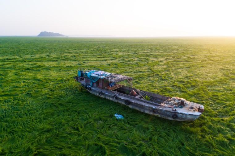 Image: China's largest freshwater lake turns into prairie