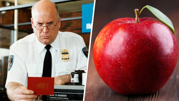 US Customs fine woman $500 for an unclaimed apple