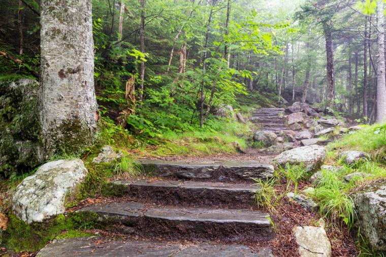 Hike the Glen Ellis Falls Trail for light exercise and to take in the area's lush landscape.