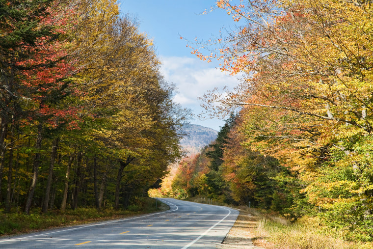 The Kancamagus Highway offers a lush and scenic drive through the region.
