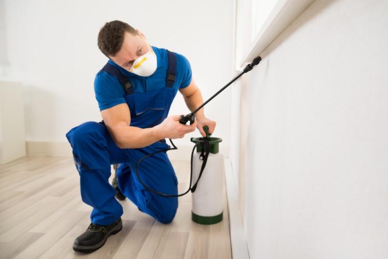 Bedbug pesticide