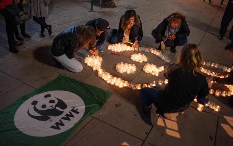 Image: Members from the World Wildlife Fund (WWF) light candles during Earth Hour
