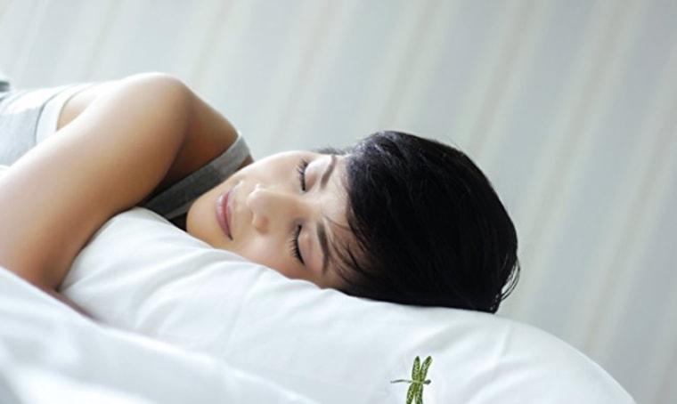 Dreampad Sleep Pillow