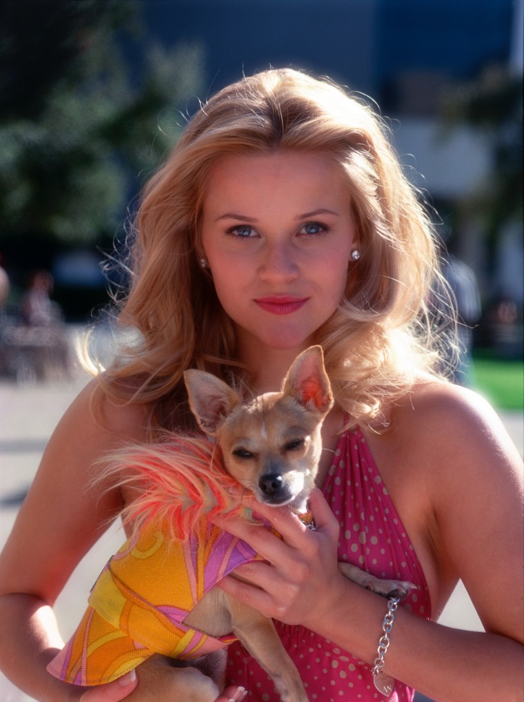 LEGALLY BLONDE, Reese Witherspoon, Bruiser, 2001.