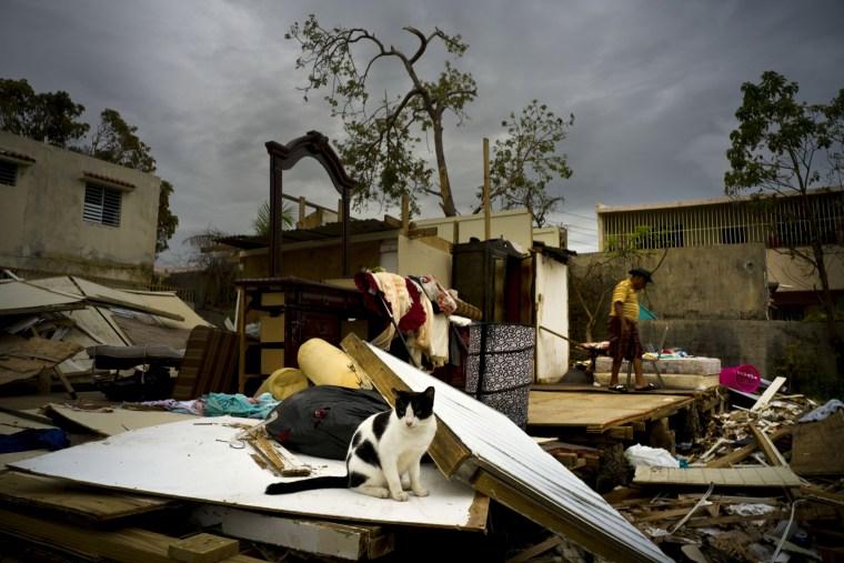Image: Hurricane Maria Puerto Rico