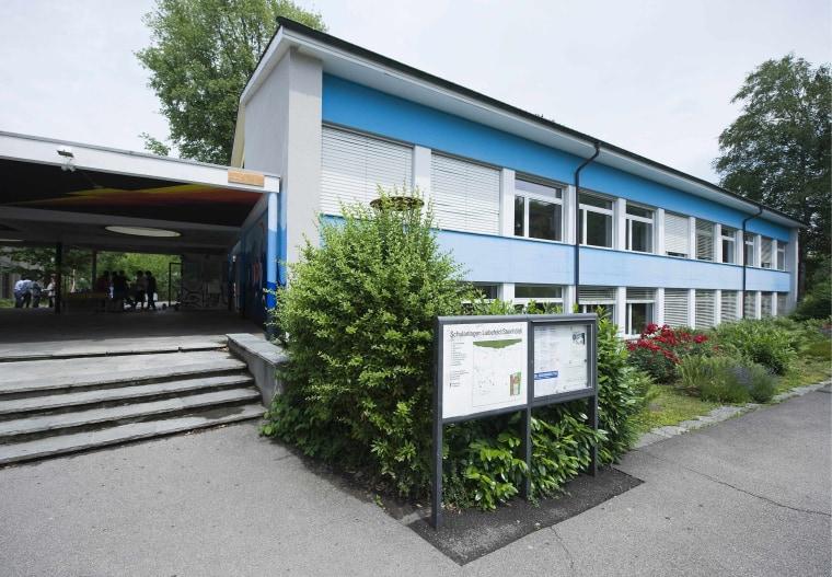 Image: Steinhoelzli school