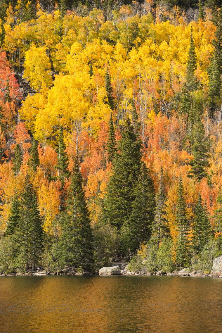 Family travel guide: Estes Park, CO Bear Lake
