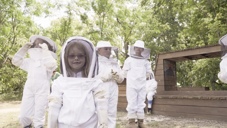Whole Foods and Whole Kids Foundation aim to put bee hives in 50 schools to educate children about the bees.