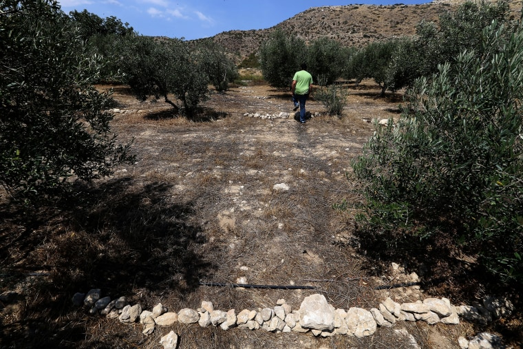 Image: Cyprus drought