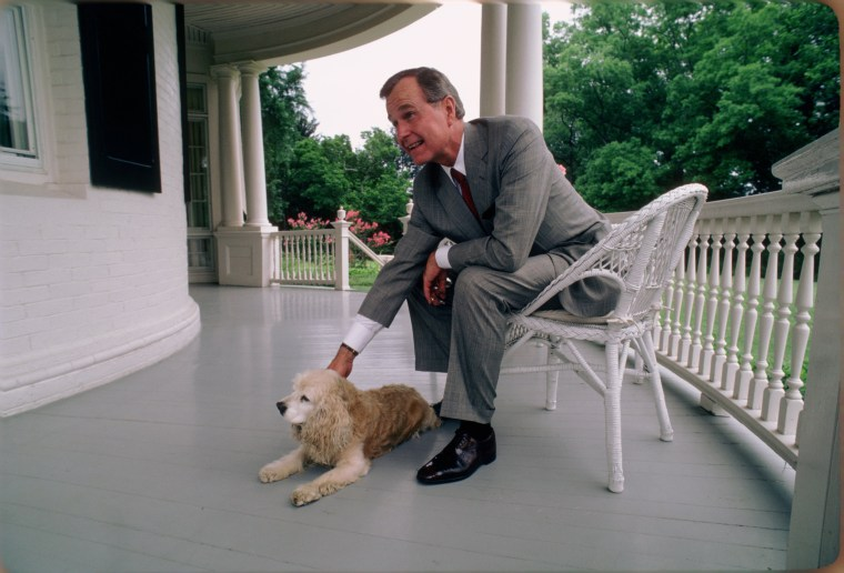 Image: Vice President George H.W. Bush with His Dog at the Vice President's Residence