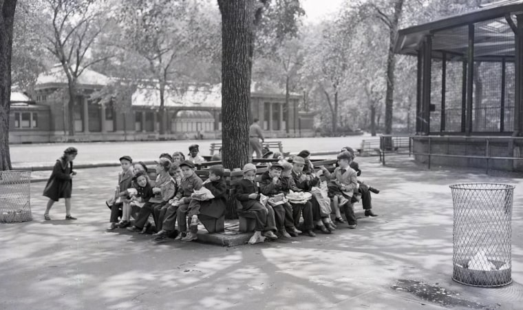 Children Eating Under Tree at Zoo