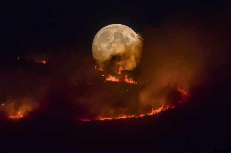 Image: BESTPIX - Summer Weather Sparks Wildfire On Saddleworth Moor