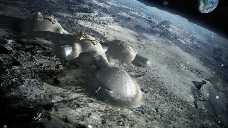 Image: MACH Habitat