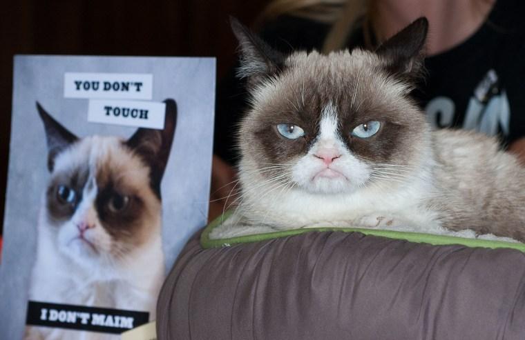 """Image: """"Grumpy Cat: A Grumpy Book"""" Book Event"""