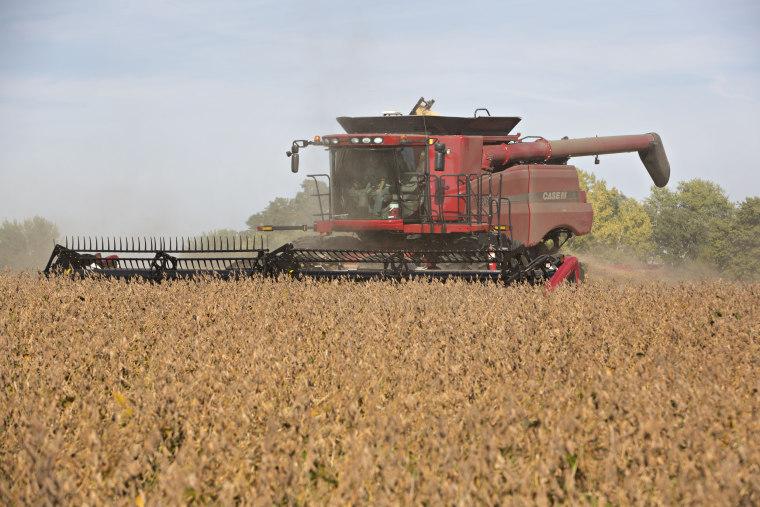 Image: Soy harvest