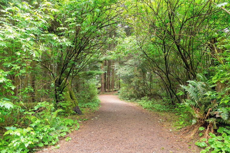 Hiking trail at Fort Clatsop along Lewis and Clark River, hiking, family travel guide
