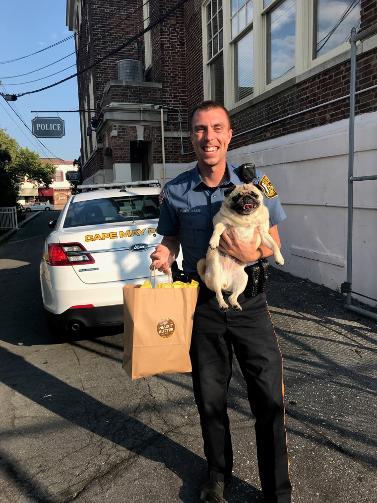 Pug Shot of runaway dog with Cape May Police Department