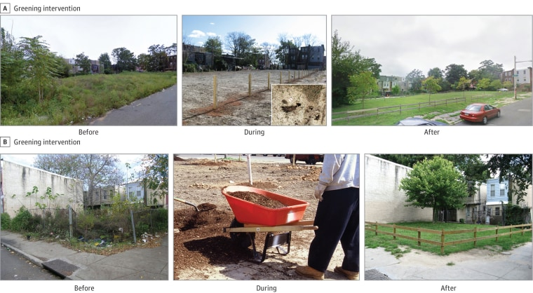 Image: Greened vacant lots
