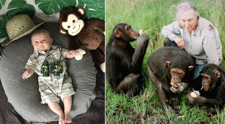 Baby Liberty dressed as primatologist and anthropologist Jane Goodall, who is famous for her extensive work with chimpanzees.