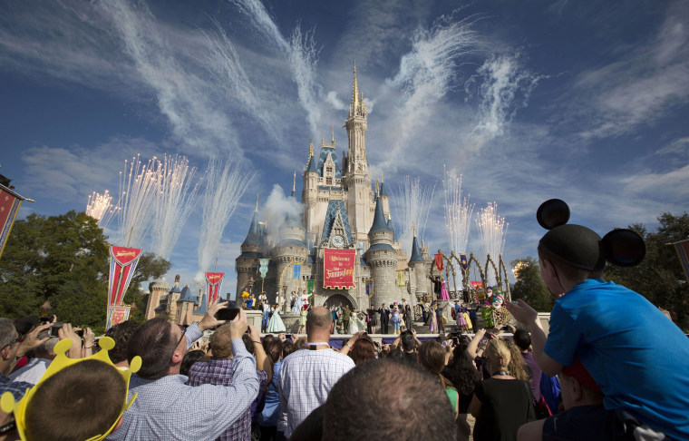 A crowd watches fireworks at Cinderella's castle in Walt Disney World in 2012.