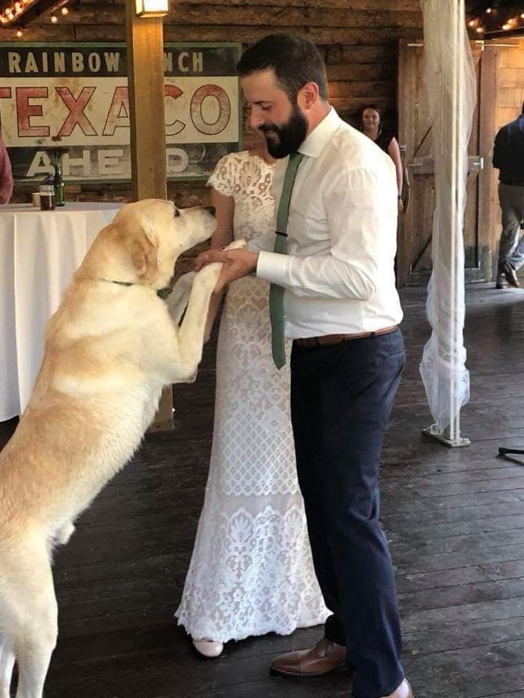 Dog photo-bombs couple's wedding photo